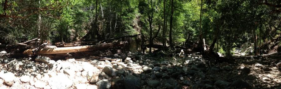 Camp Spot Pano